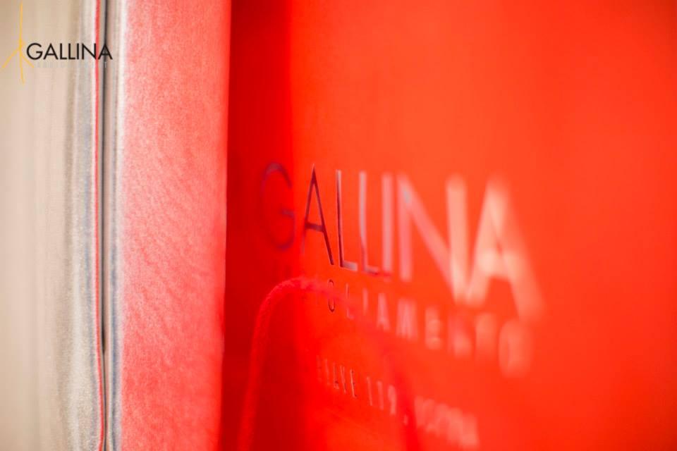 GALLINA GRIFFE - ISPRA